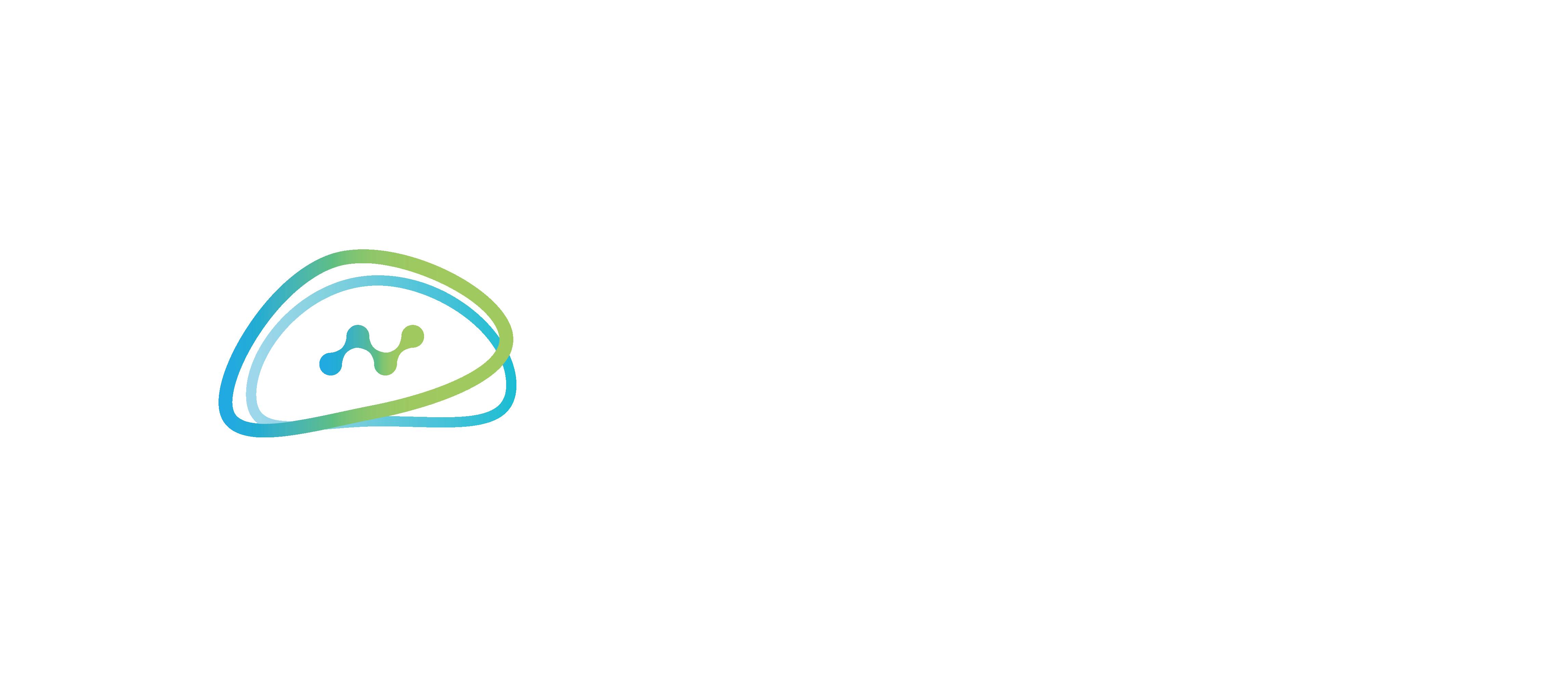 Neurala Logo White 2020
