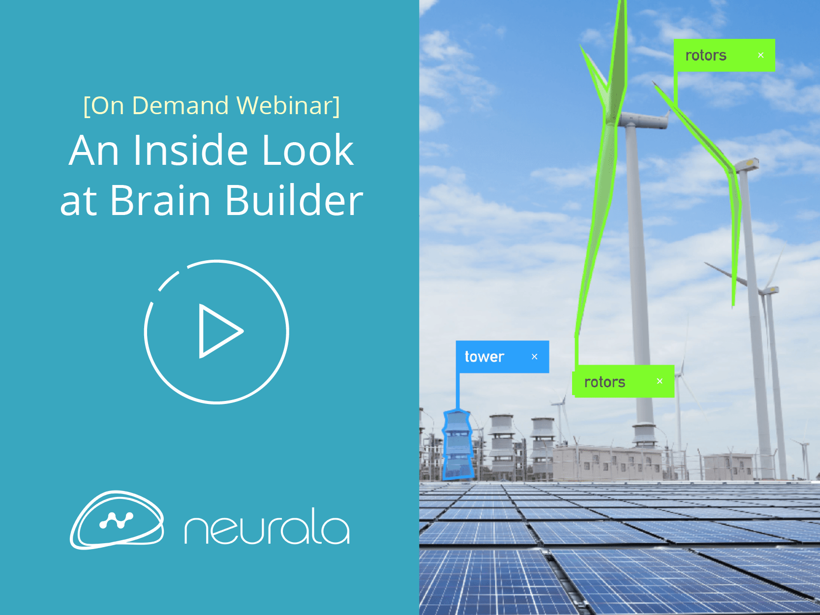 An Insider Look at Brain Builder