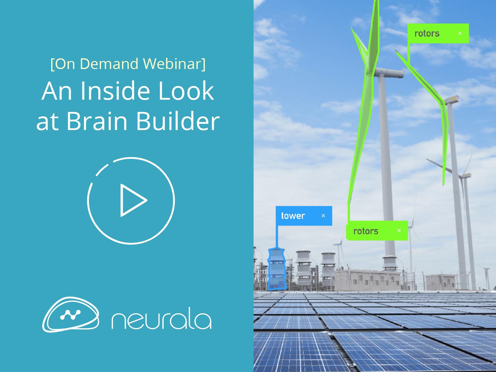 An Insider Look at Brain Builder